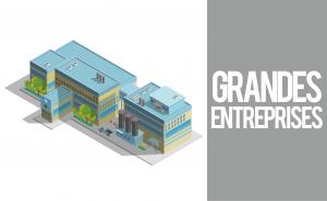 Grandes Entreprises-WinLassie