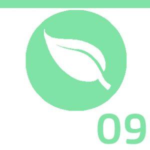 Module-09-Environnement
